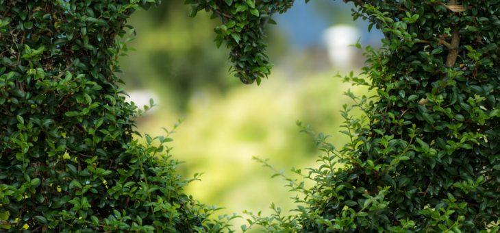 Zahradní domky a domečky pro dokonalý design zahrady